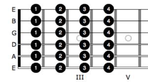 Quasichromatik-effektiv-gitarre lernen